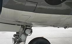Harrier_1